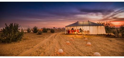 Experience the Desert charm the star lit!